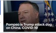 美媒头版:蓬佩奥是特朗普攻击中国的狗