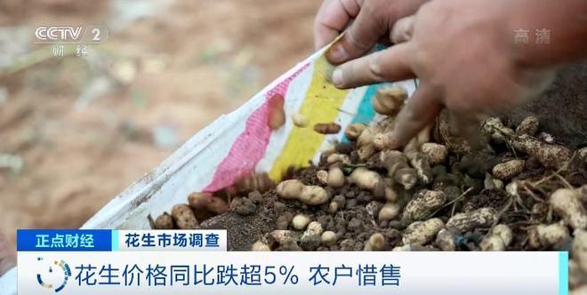 每吨降价2000元!工厂库存直接贬值200万!企业忧心忡忡!这种农作物,咋回事?